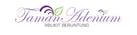 SD-logo-purple.1